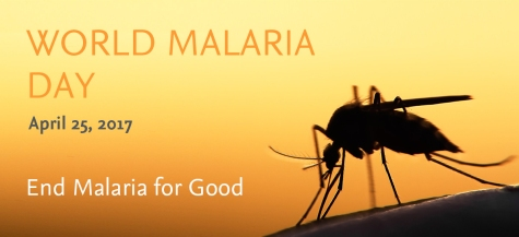 world-malaria-day.jpg